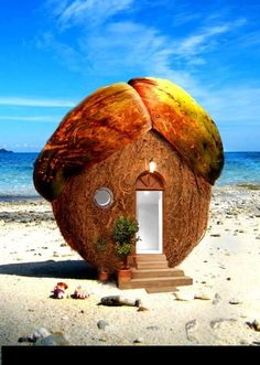 How cute is this.  Looks like a coconut house.