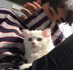 Image de ulzzang, asian, and cat