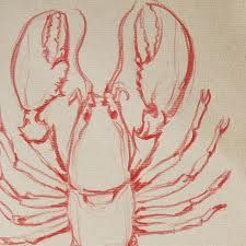 lobster pencil drawings - Google Search