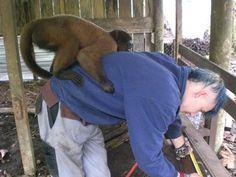 Volunteer programs in exotic Ecuador with Love Volunteers!