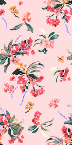 Shop Samantha Santana's real floral patterns and prints, on REMOVABLE, prepasted wallpaper rolls. Prepasted Wallpaper, Fabric Wallpaper, Flower Wallpaper, Pattern Wallpaper, Iphone Background Wallpaper, Aesthetic Iphone Wallpaper, Aesthetic Wallpapers, Traditional Wallpaper, Cute Wallpapers