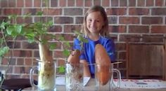 A Little Girls Potato Experiment Will Change The Way You Think About Food!