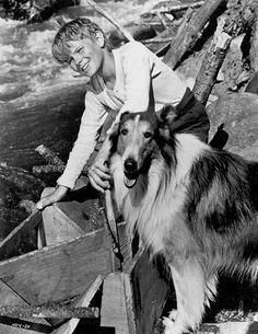 Gary Gray & Lassie