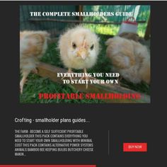 HOW TO RAISE CHICKENS  DUCKS + DIY COOP PLANS Hatching Poultry Homestead Prepper