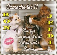 Plus que deux jours avant le week end! Image Bon Courage, Happy Weekend Images, Good Thursday, Saint Yves, Good Morning Good Night, New Years Eve Party, Week End, Smiley, Teddy Bear