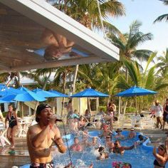 Bahamas Bar | Abacos Island | Abaco Restaurant... Oh the memories in this pool!!