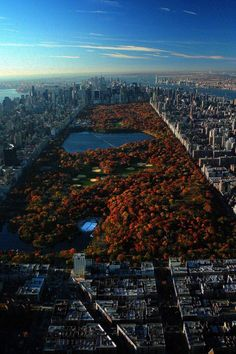 New York. Autumn.