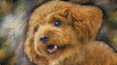 PCペイントで絵を描きました! Art picture by Seizi.N:   僕の飼っている愛犬ティアモは、トイプードル犬で系統でしょうか本当に頭がよく、ぬいぐるみのティディーベアーの様で可愛いし飼いやすいです、そんな愛犬をお絵描きしてみました。  Healing by Richard Smallwood http://youtu.be/PfnP0mZLIGI