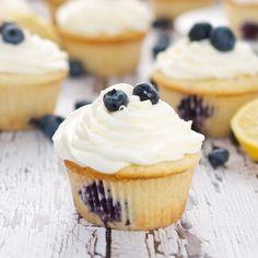 Cupcake Recipes : Lemon Blueberry Cupcakes
