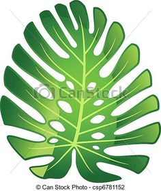 Vector - Leaf tropical plant - Monstera. - stock illustration, royalty free illustrations, stock clip art icon, stock clipart icons, logo, line art, EPS picture, pictures, graphic, graphics, drawing, drawings, vector image, artwork, EPS vector art