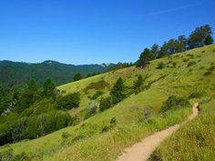 Dipsea Trail: Mill Valley to Stinson Beach - 13.7 miles Mt Tamalpais State Park - Dipsea Trailhead in Mill Valley