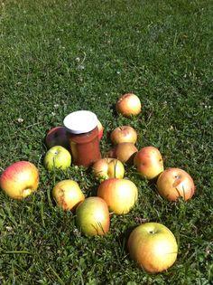 Gem de mere cu pere fara zahar