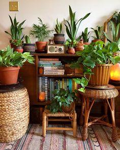 New Stylish Bohemian Home Decor and Design Ideas - Bohemian Home Bedroom Living Room Decor, Bedroom Decor, Aesthetic Rooms, Bohemian Decor, Bohemian Design, Bohemian Style, Boho Chic, Plant Decor, Indoor Plants