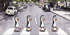 by Liniers