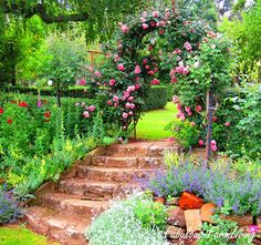 """Stone steps and rose covered arch leading to another """"room""""of the garden."""