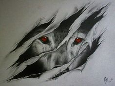 Image result for wolf drawings