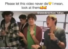 One Direction Songs, One Direction Harry, One Direction Pictures, Super Funny Videos, Funny Video Memes, Cute Boyfriend Sayings, Celebrity Memes, Harry Styles Funny, Want You Back