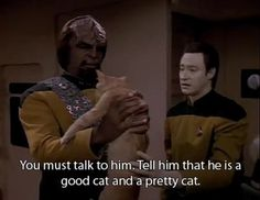 Worf (Michael Dorn) wasn't exactly a cat guy, but it was a great scene. With Data (Brent Spiner) and Spot the cat.