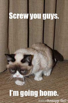 Grumpy Cat does South Park (Cartman). Screw you guys. I'm going home.