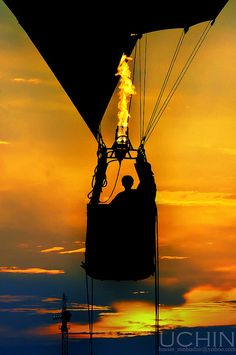 Love the gorgeous silhouette of the balloon's basket against the orange sky. Travel Pictures, Cool Pictures, Cool Photos, Air Ballon, Hot Air Balloon, Silhouettes, Shadow Silhouette, Balloon Rides, Mellow Yellow