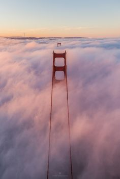 Above the Foggy Lineup by Toby Harriman | My Photo | Scoop.it