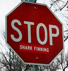stop shark finning - a smart way to vandalize