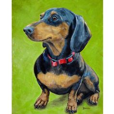 Dachshund Dog Art 8x10 print by Dottie Dracos, Black and Tan Doxie Sitting, on Lime Green Background. $12.00, via Etsy.