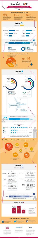 Infographie | Réseaux sociaux : comment se positionnent les entreprises dans le B to B?