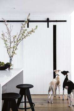 Barn door for pantry. You are in the right place about horse barn door Here we offer you the most beautiful pictures about the barn door hardware you are looking for. When you examine the Barn door fo House Inspo, Doors, Home, Interior Barn Doors, Modern Barn, Horse Barn Doors, House, Modern Rustic, Rustic Beach Decor