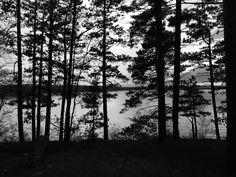 North Trout Lake, WI  May 2017