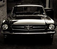 Fancy - 1965 Ford Mustang