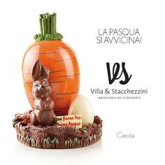 Nel nostro laboratorio oggi un coniglietto è venuto a farci visita...lo vuoi conoscere?  http://www.villaestacchezzini.it