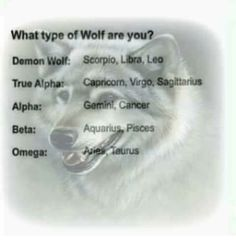 What type of wolf are you? Capricorn: A True Alpha Wolf.