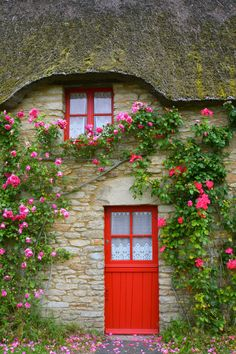 Climbing roses at this French cottage door