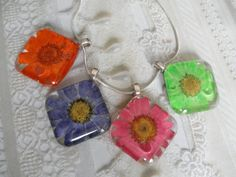 Summer Brights-Choice Of Daisy Pressed Flower by giftforallseasons