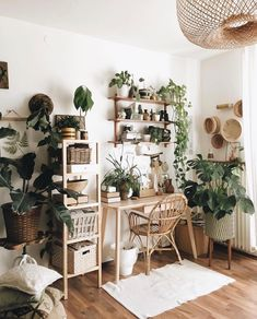 Room Ideas Bedroom, Home Decor Bedroom, Diy Home Decor, Decor Room, Living Room Plants Decor, House Plants Decor, Bedroom Small, Decor Crafts, Casa Hipster