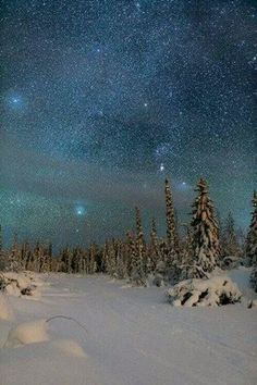 Orion makes an appearance in the sky over the Northwest Territories, Canada. Photo by Adam Hill. Nocturne, Beautiful Sky, Beautiful World, Landscape Photos, Landscape Photography, Ontario, Alaska, Northwest Territories, Winter Scenery