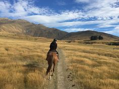 Horse riding in the valley of Cardrona, #NewZealand