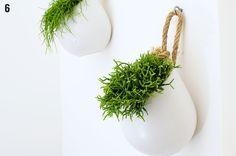 living room ideas – New Ideas Garden Inspiration, Interior Inspiration, Office Bathroom, Bathroom Ideas, Valentines Day For Him, Plant Information, Toilet Design, House Plants, Flower Pots