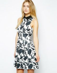 Closet Printed Skater Dress with Contrast Collar
