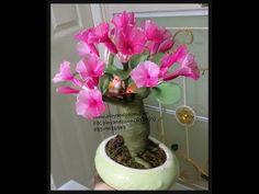 How to make stocking flower ( ชวนชม(Adenium)ployandpoom.com - YouTube