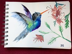 Water colour hummingbird