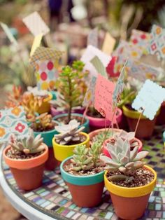 These miniature potted succulents are beyond adorable and you can get really creative with how you pot and display them. A sure crowd pleaser. Additionally, succulents are incredibly low-maintenance. Another plus!