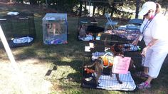 Many booths were set up by several Atlanta area rescue groups