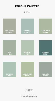 Sage and Taupe Colour Combination #Colour Palette 61