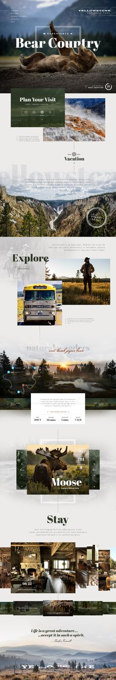 #Website #web #design #UI #layout #inspiration #landscape