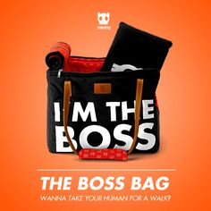 Wanna take your human for a walk? The Boss Bag!