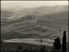 Toscana 2 -limited edition
