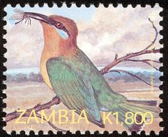 Böhm's Bee-eater stamps - mainly images - gallery format