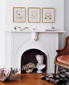 Fill an empty fireplace with coral and a bust